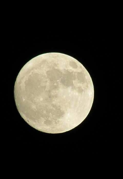 luna mari carmen valencia